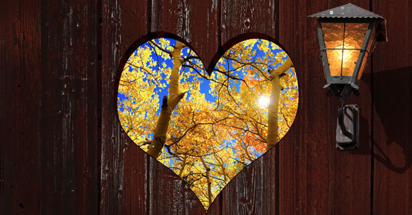 fall-heart.jpg