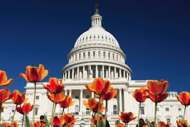 Washington_capitol_image.png