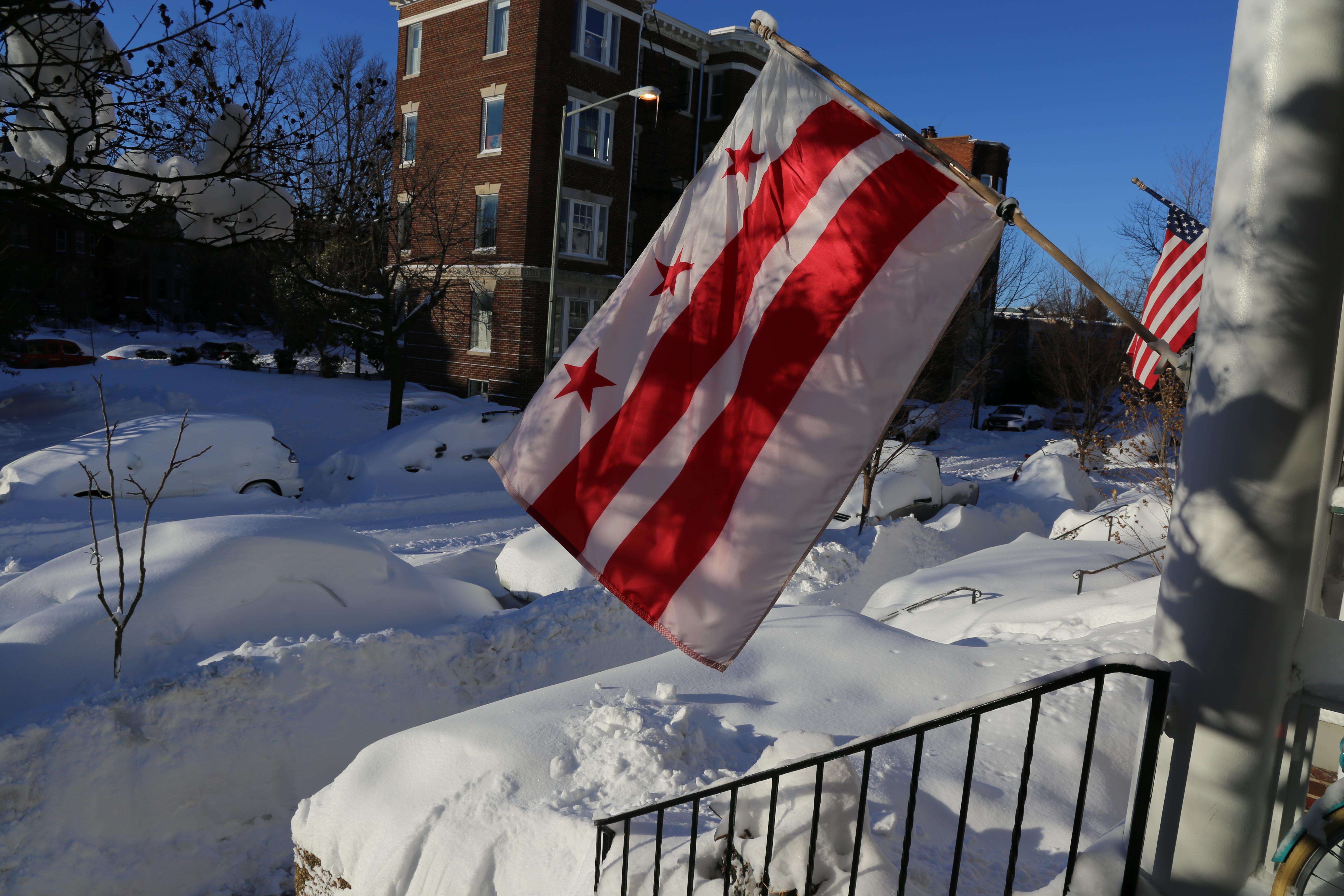 Snow_DC_Flag.jpg