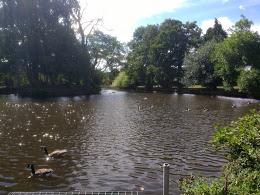 Elmore Park, Rugeley