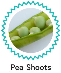 D: Pea Shoots