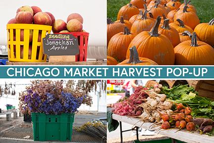 Chicago Market Harvest Pop-Up