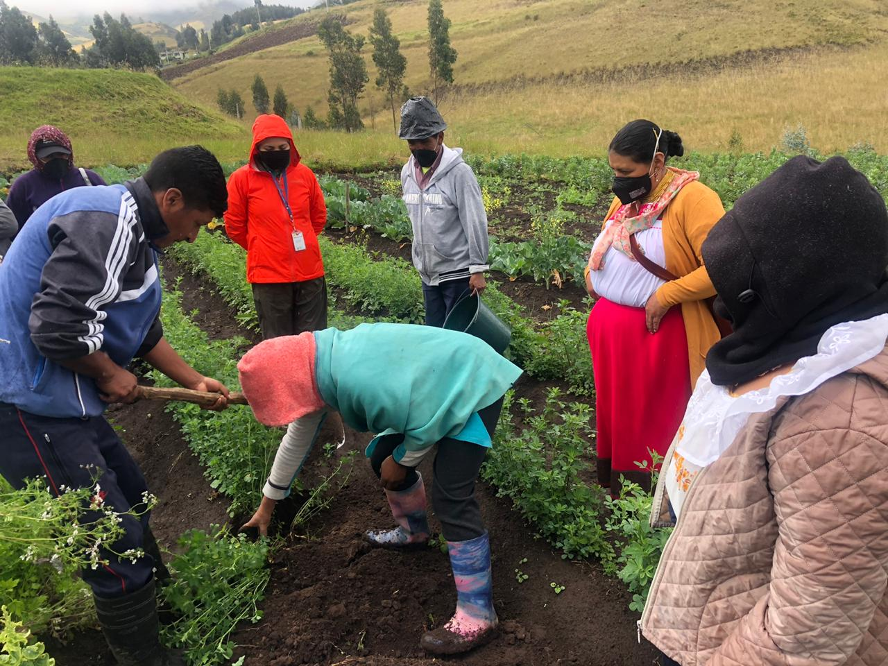 Community members in Ecuador work on an agriculture project during COVID