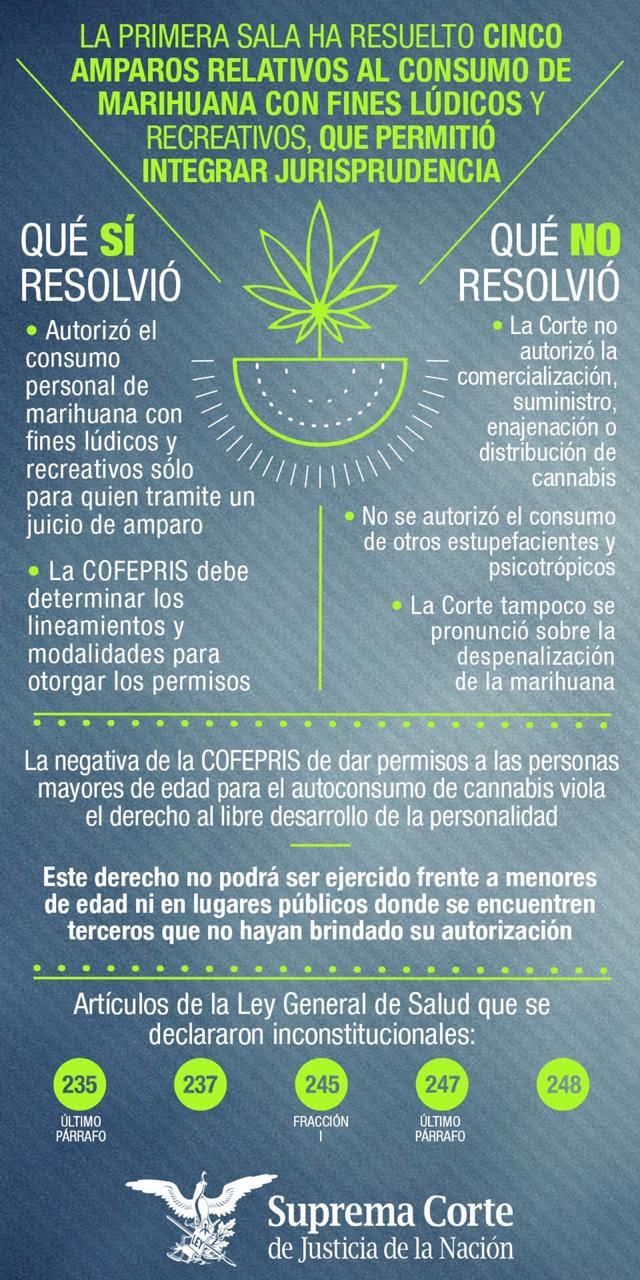 Marihuana-infografía.jpg
