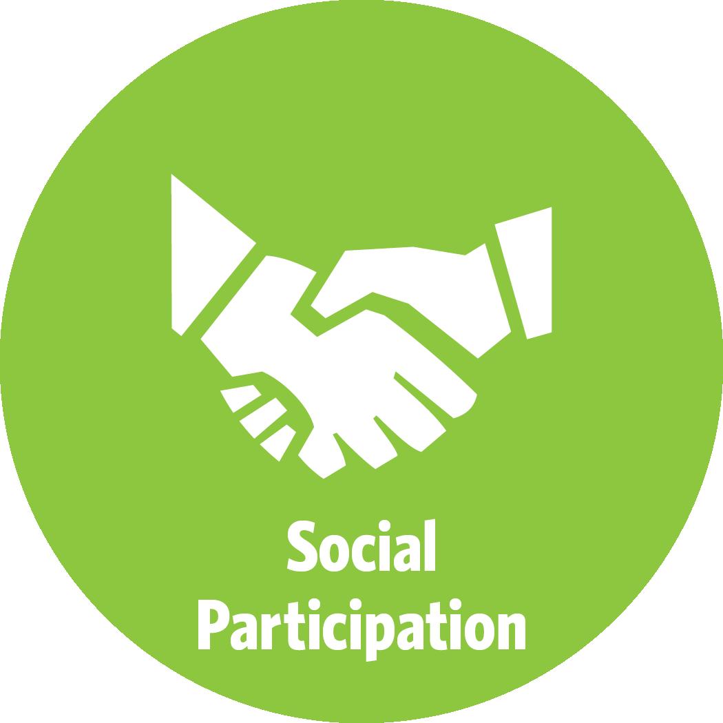 AARP_CA_AgeFriendly_SocialParticipation.png