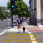East_Village_Walkability.png
