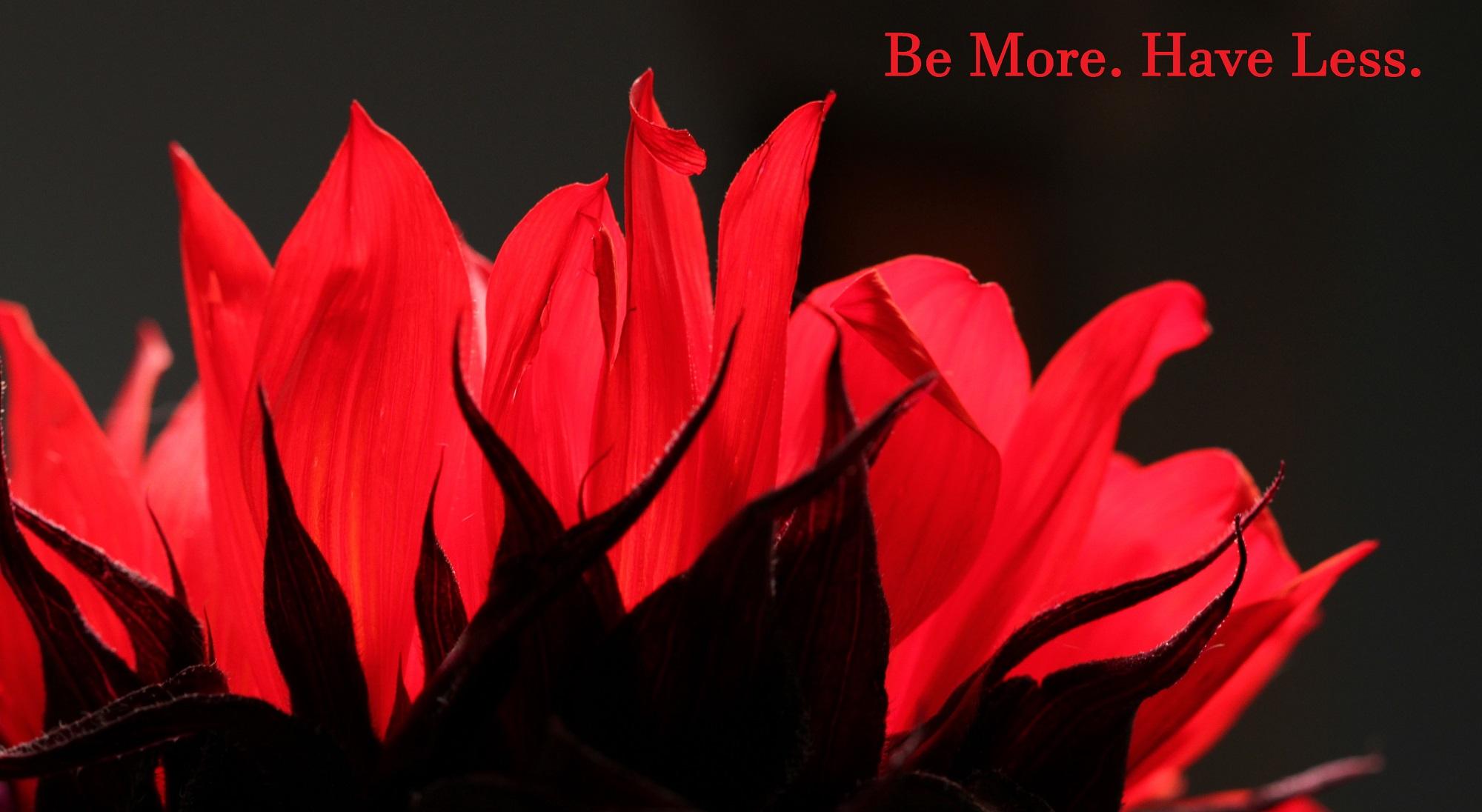be_more.jpg