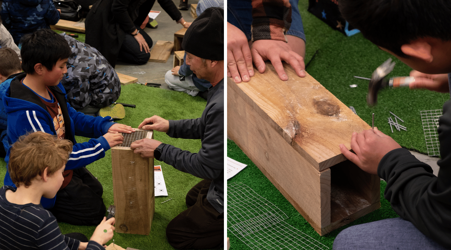 Nailing together a wooden trap box.