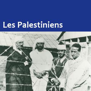 DBD-Palestinians.png