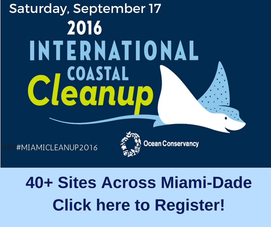 2016 Intl Coastal Cleanup
