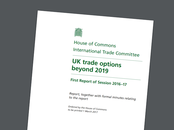 UK trade options beyond 2019