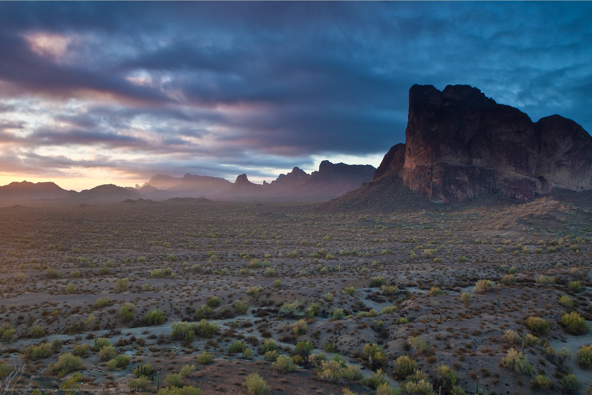 Eagletail_Mountains_Wilderness_AZ.jpg