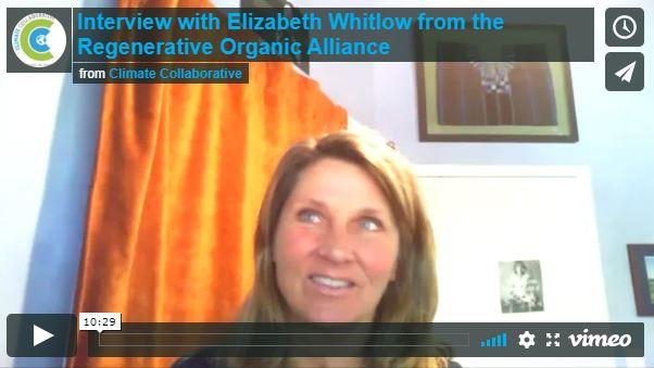 elizabeth_whitlow.JPG