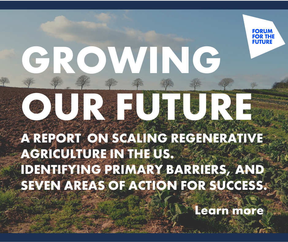 Growing_Our_Future_Report_Graphic_2.png