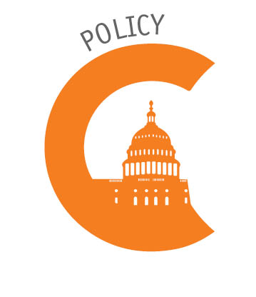 POLICY_icon.jpg