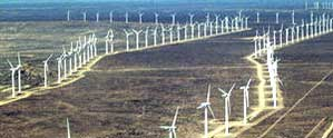 sidebar_windfarms.jpg