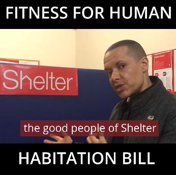 shelter_video_website_1.png