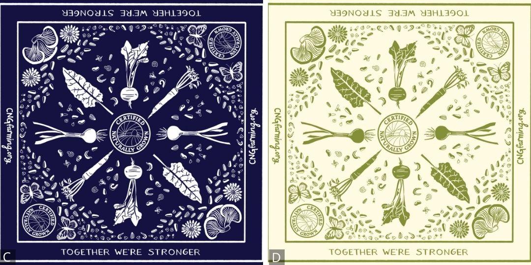 Seeds & Veggies