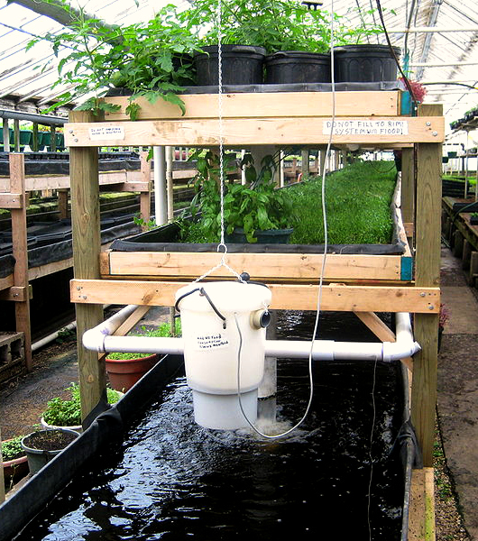 Aquaponics system at Growing Power, Milkwaukee, WI. Photo by Ryan Griffis