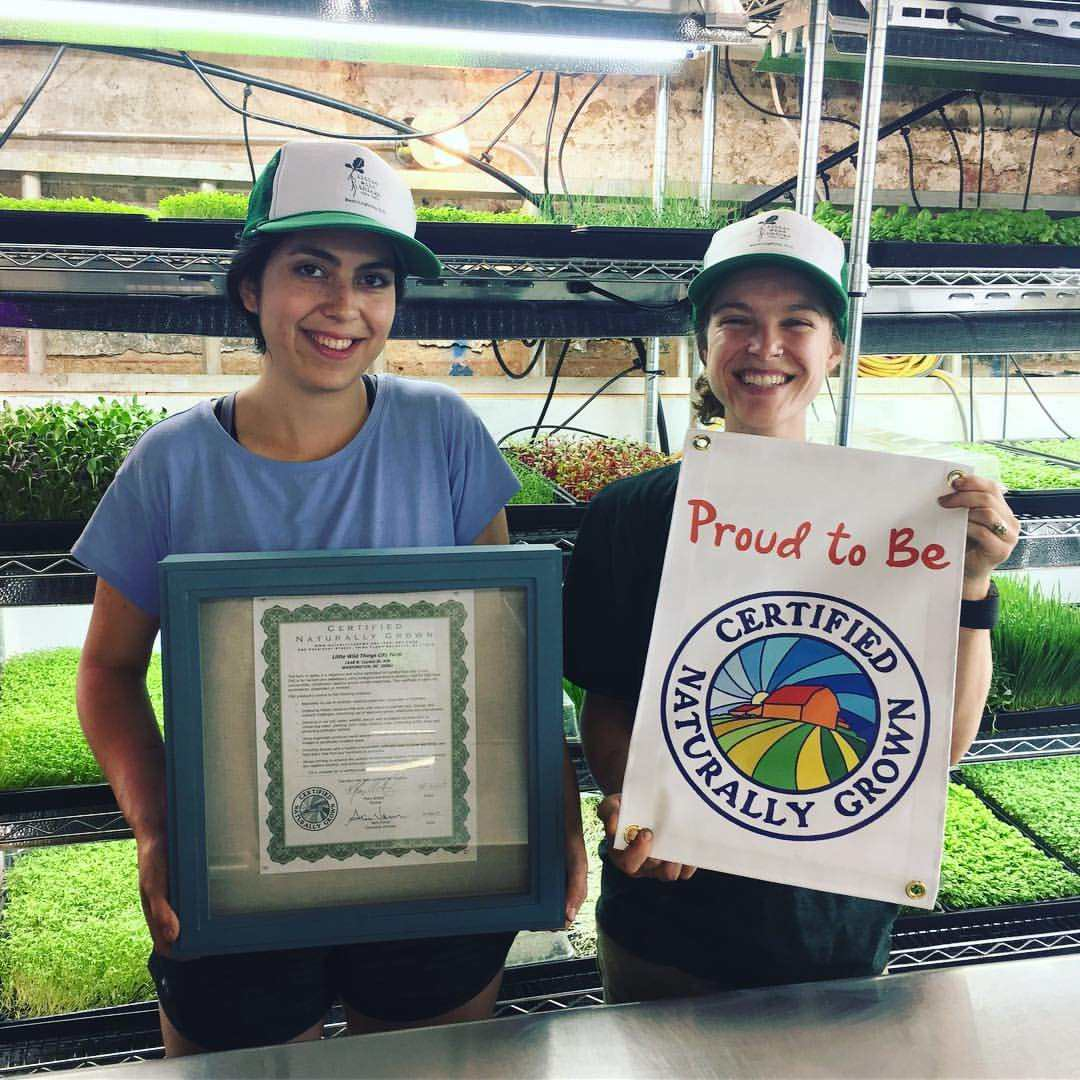Little Wild Things Farm is Certified Naturally Grown