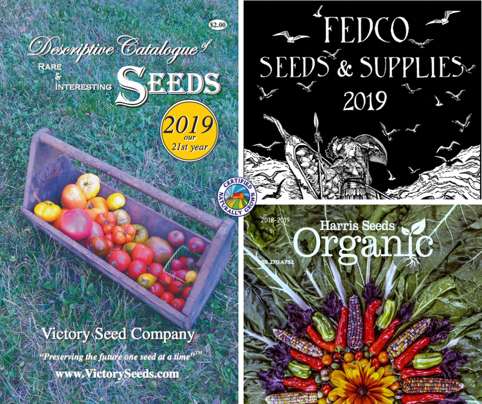 Organic Alternative Seeds