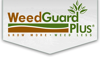 Organic Alternative Sustainable Weed Control