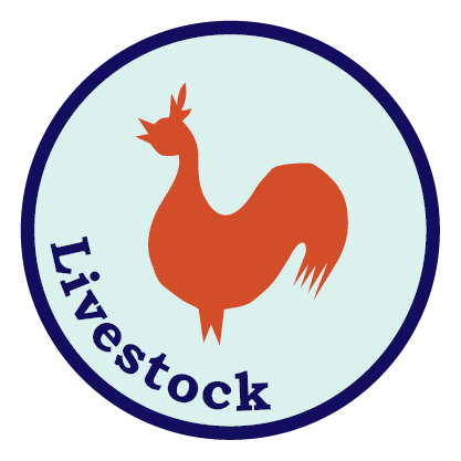 Certified Naturally Grown Alternative Organic Livestock