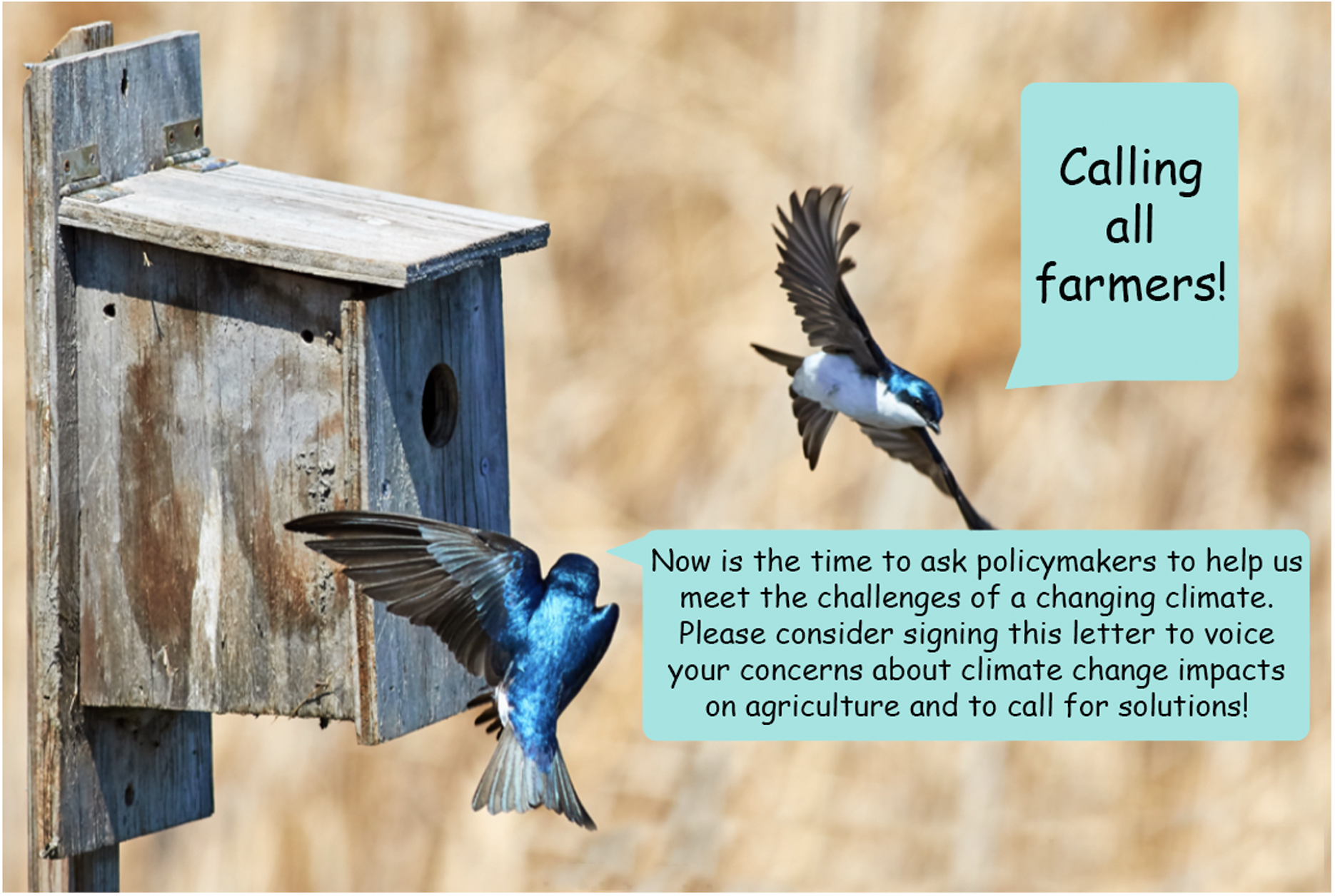 Farmer_Climate_Letter_Graphic_2.png