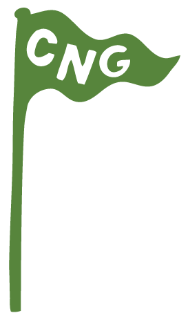 ambassador_flag_green.png