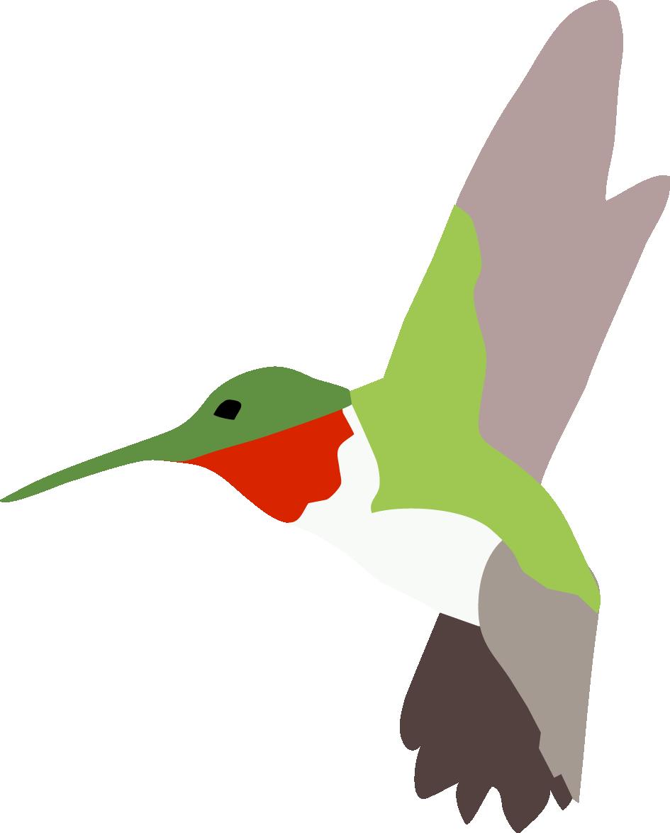 Hummingbird_facing_left.png