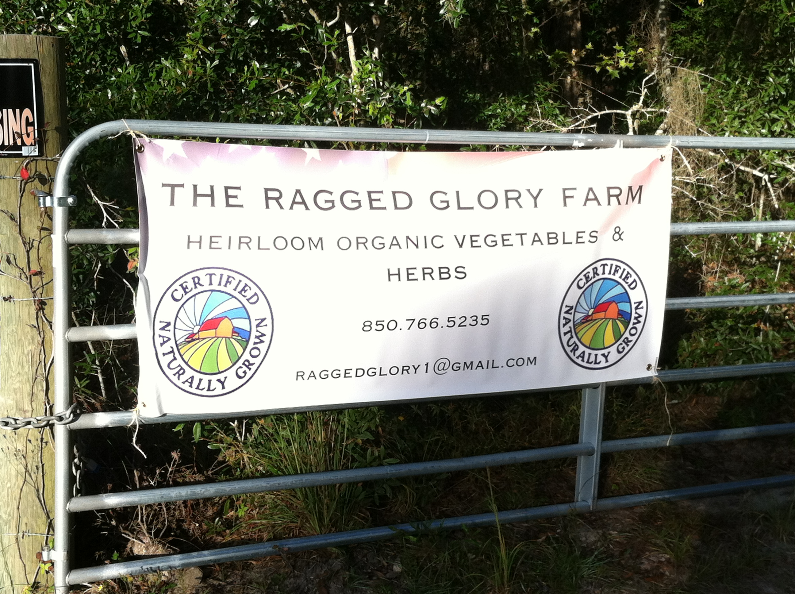 FL_Greg_Jubinsky_-_The_Ragged_Glory_-CNG_sign_2012-10-20_08.59.00.jpg