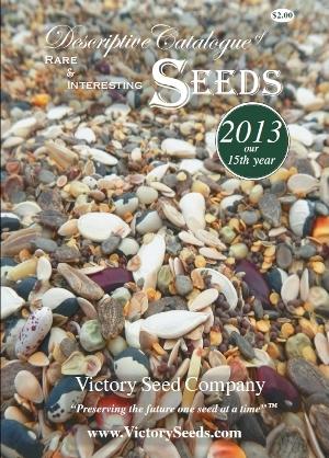 2013_catalog-cover.jpg