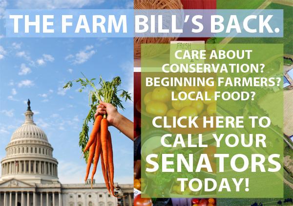 2013_5-farm-bill-senate-floor-for-take-action-page.jpg