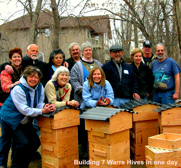 CO.HoneybeeKeepApiary.BuildingWarreHives.jpg