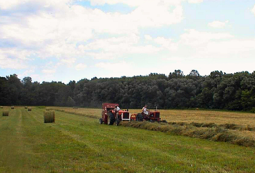 NY.LeeFarms.Bob_Sr_on_the_AC5040_baling_and_Bob_Jr_on_the_AC_WD45_raking_on_Bills_Rd_2002.jpg