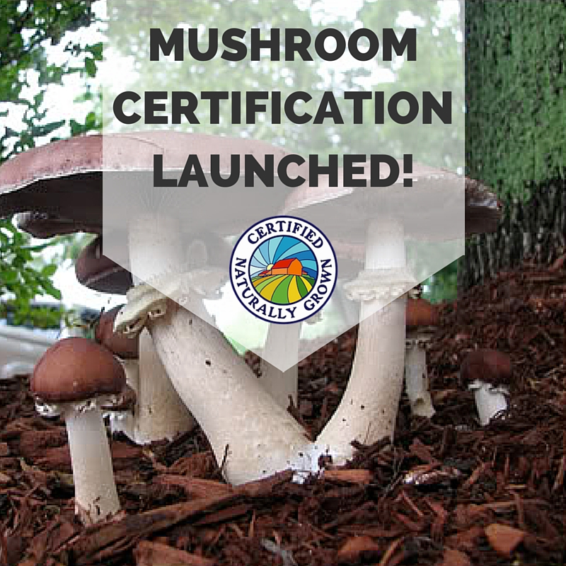 MUSHROOM_CERTIFICATION_LAUNCHED!.jpg