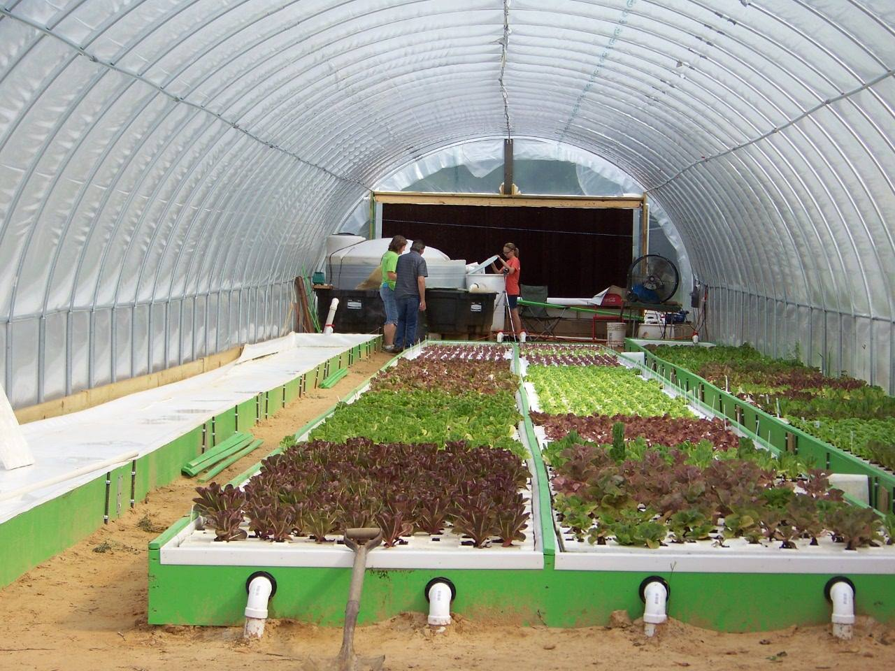 aquaponics certification 1.jpg
