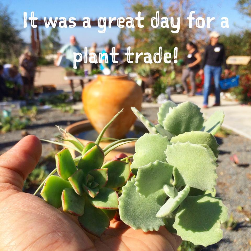 plant_trade.jpg