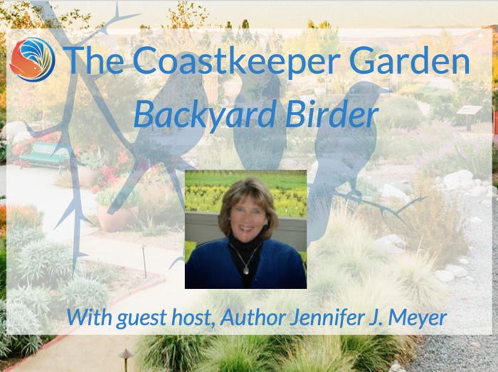 backyard_birder.png