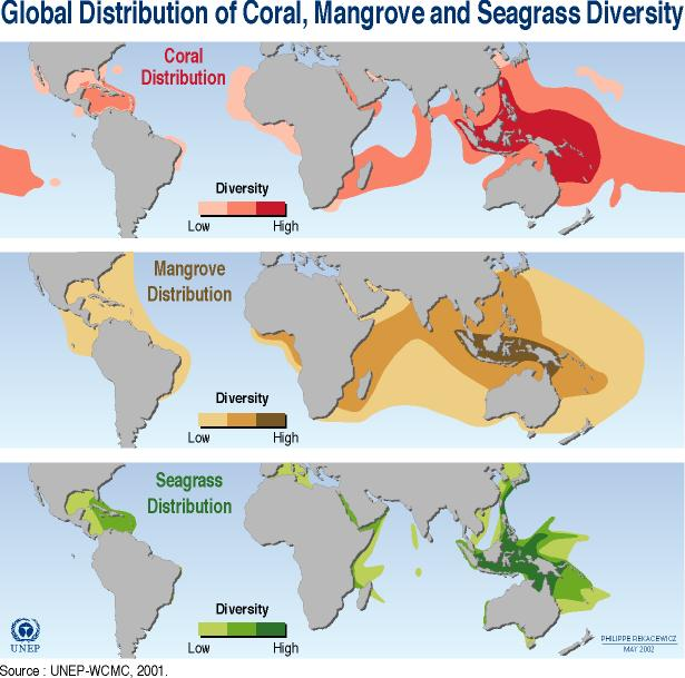 39-global-distribution_coral-reef-mangrove-and-seagrass.jpg