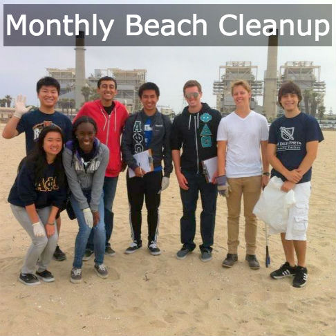 Beach_cleanup_button.jpg