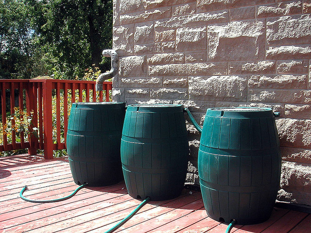 Check out these attractive rainbarrels