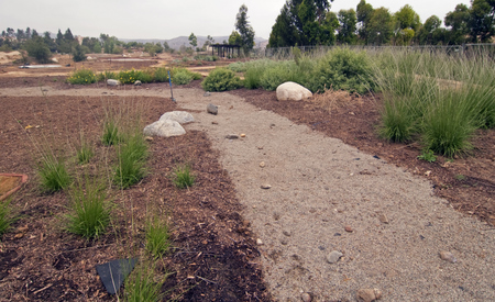 Completed dry creek bed in the Sage Scrub habitat