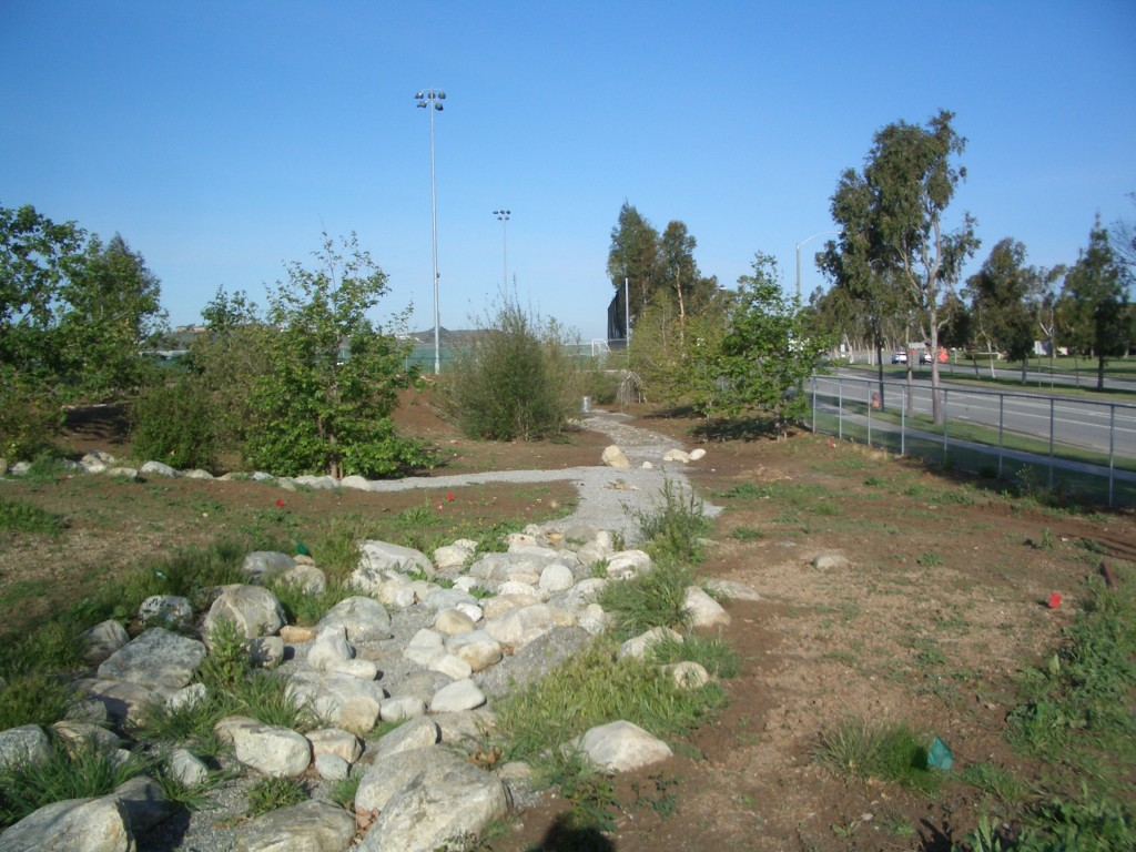 Riparian habitat that will become the Natural Play Area
