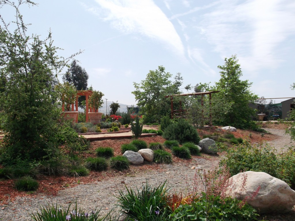 A gorgeous view looking over the dry creek bed towards the Italian vignette.