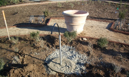 Drip Irrigation for orange tree pots in Italian Vignette