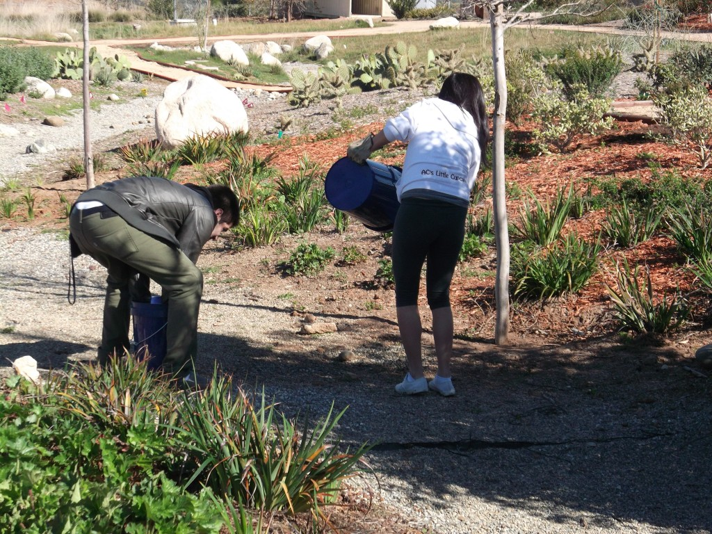 Volunteers replenishing gravel in our dry creek bed.