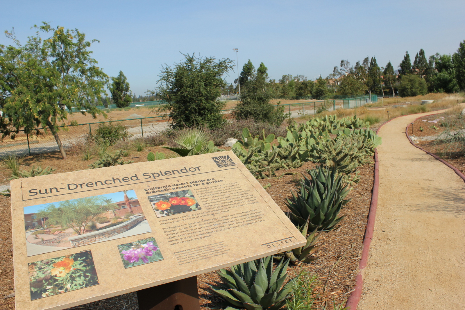 Our desert habitat and info panel provide unique landscaping ideas.