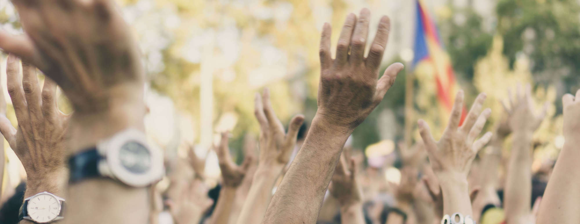 Making the world better|Your help is needed to fight for what is right. The one Campaña theme can be used to across your English and Spanish sites!!