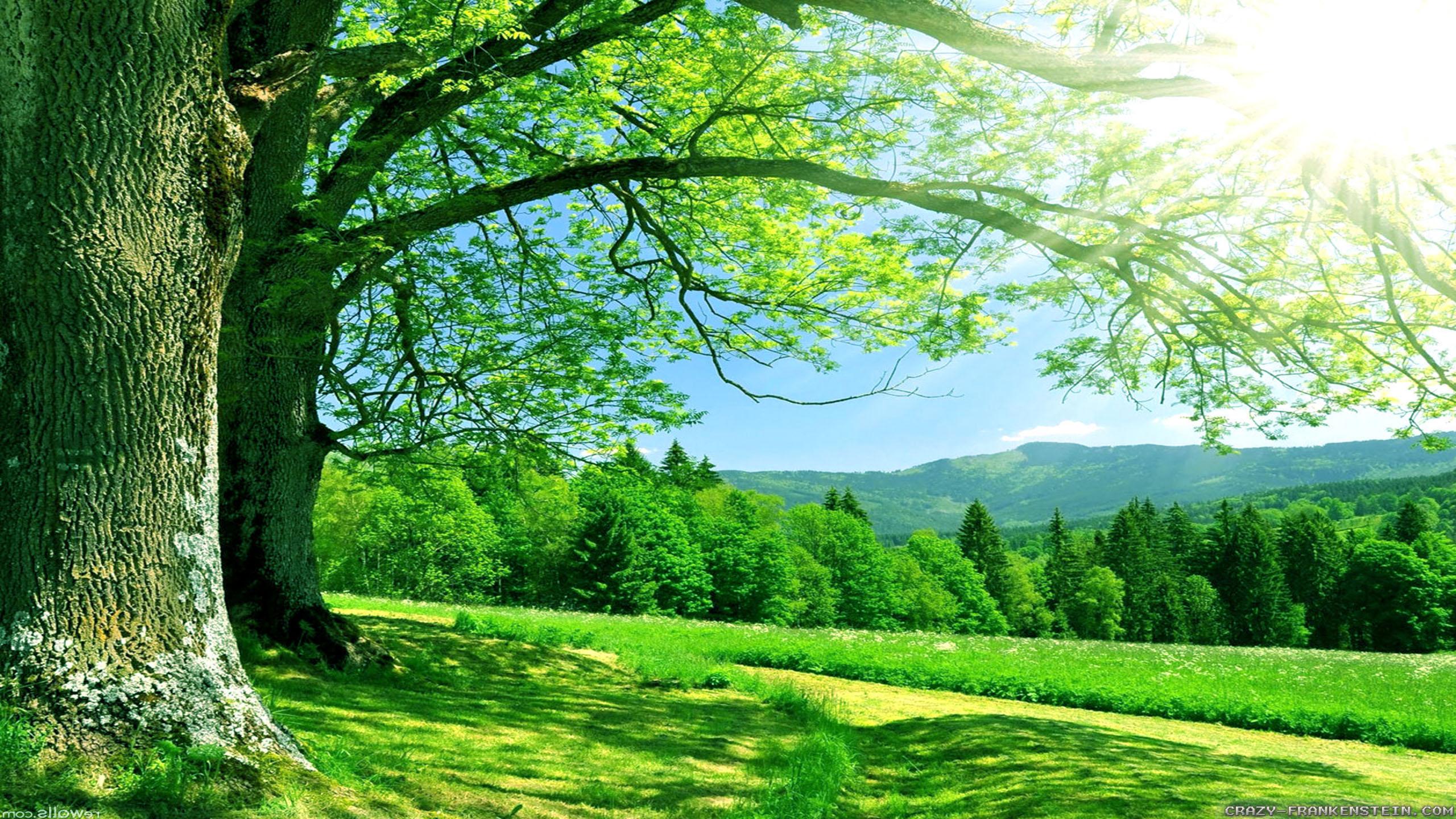 greennature.jpg